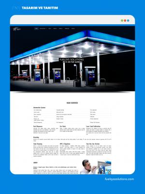 www.fuelsyssolutions.com